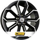 CMS C20